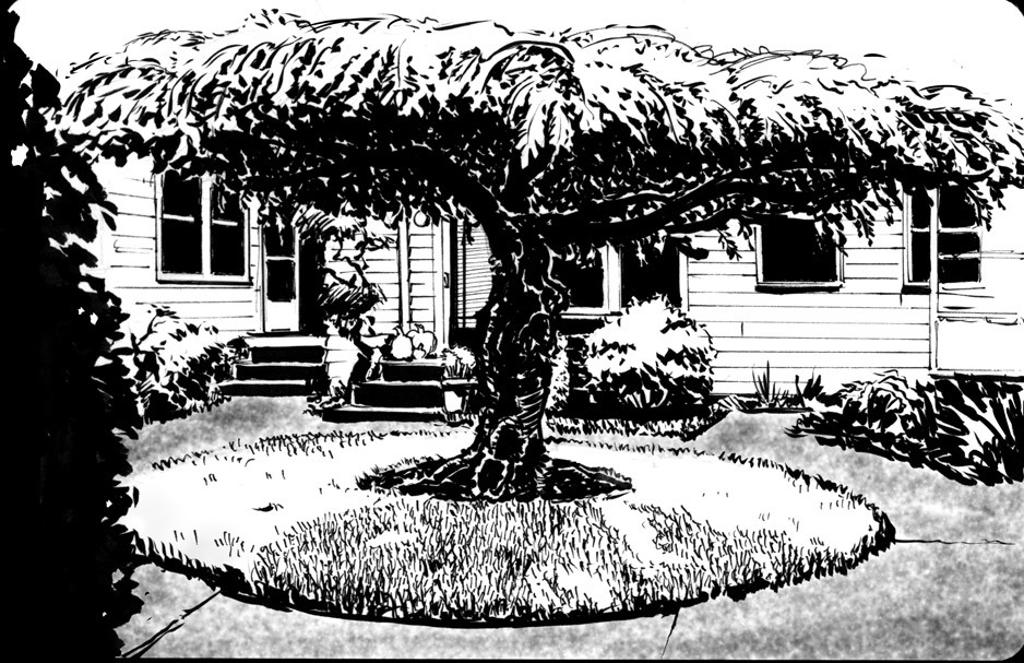 10-11-Front-Yard